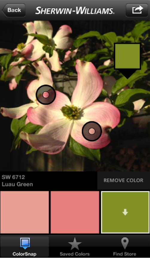 color_snap